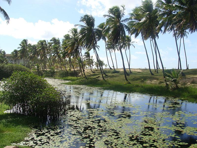 Praia da Costa do Sauípe