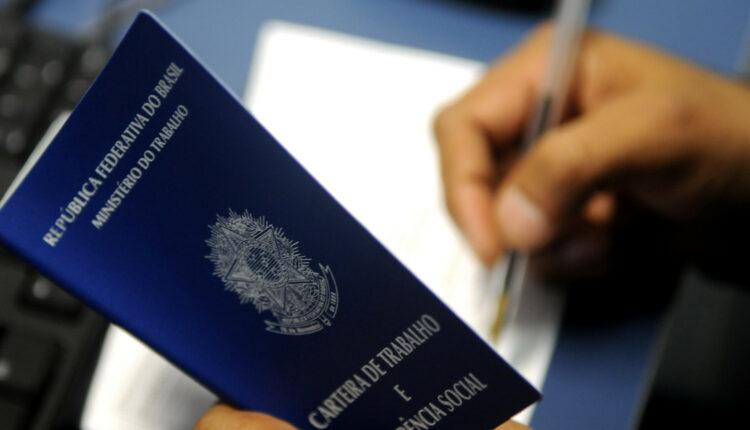 São Paulo abre mais de 600 vagas de emprego em processo seletivo: carteira de trabalho